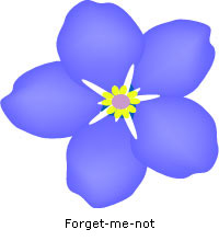 Image of a forget me not our logo for dementia care